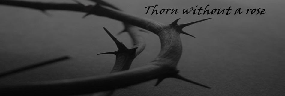 Thorn without a rose